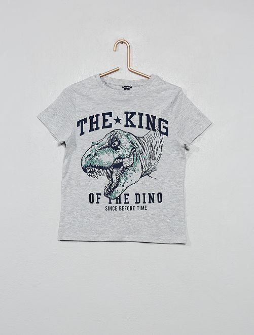 Camiseta con estampado de 'dinosaurio'                                                     GRIS Chico